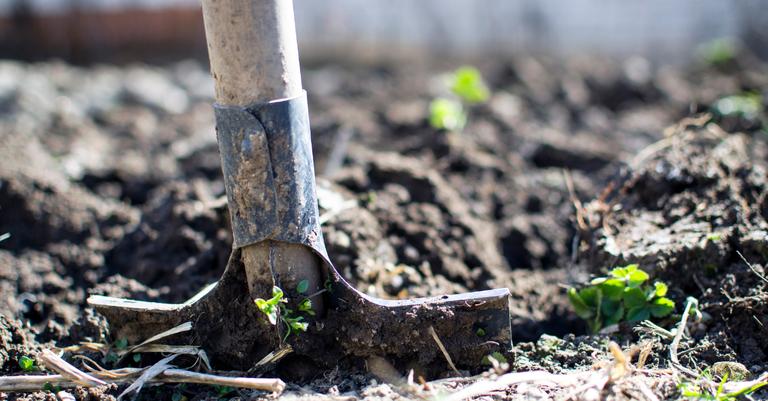 garden shovel.png